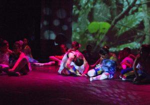 projecte-brasil-espectacle-terra-2